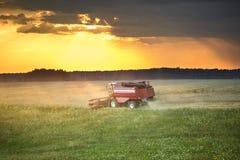 Den moderna tunga skördearbetaren tar bort det mogna vetebrödet i fält för stormen Säsongsbetonat jordbruks- arbete royaltyfri fotografi