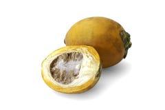 Den mogna aceraen eller betelen gömma i handflatan mutterfrukt Royaltyfri Fotografi