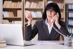Den mogna affärskvinnan som arbetar i kontoret Royaltyfri Fotografi