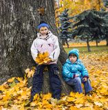 Den mogna hösten i stad parkerar. royaltyfri fotografi
