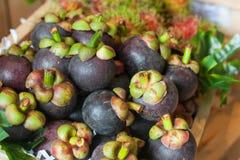 Den mogna mangosteenen, mangosteenen är en drottning av frukt Fotografering för Bildbyråer