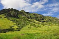Den Mokuleia stranden parkerar, den norr kusten, Oahu Fotografering för Bildbyråer
