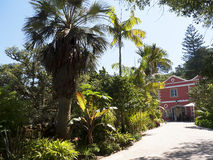 Den Monserrate slotten är en exotisk palatslik villa som lokaliseras i Sintra, Portugal, den traditionella sommarsemesterorten av Fotografering för Bildbyråer