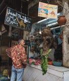 Den moroccan manblicken på kamelhuvudet i marknaden Arkivbild