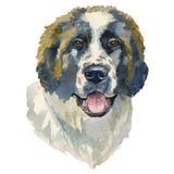 Den moscow vakthunden, vattenfärghand målade hundståenden stock illustrationer