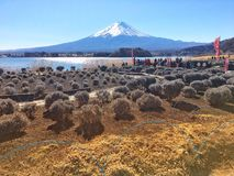 Den mountian Fujien Royaltyfri Foto
