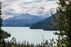 Den Muncho sjön brittiska Columbia Kanada denna mycket stora djupblå sjö är bekant för dess stora fiske såväl som dess skönhet Arkivbilder