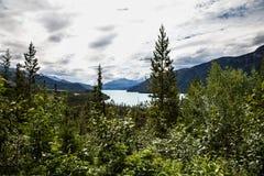 Den Muncho sjön brittiska Columbia Kanada denna mycket stora djupblå sjö är bekant för dess stora fiske såväl som dess skönhet Arkivfoton
