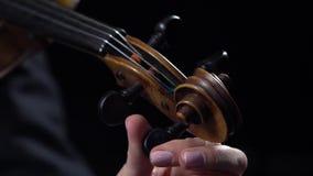 Den musikerflickan trimmar fiolen Svart bakgrund close upp arkivfilmer