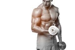 Den muskulösa mannen som utarbetar att göra, övar med hantlar på biceps, stark manlig abs som isoleras över vit Arkivbild