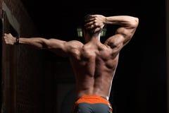 Den muskulösa modellen Flexing Back Muscles poserar Royaltyfri Bild