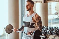 Den muskul?sa tatuerade mannen g?r hans ?vningar med skivst?ngen i idrottshall n?ra f?nster royaltyfri bild
