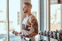Den muskul?sa tatuerade mannen g?r hans ?vningar med skivst?ngen i idrottshall n?ra f?nster arkivfoton