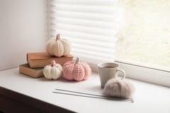 Den mysiga och mjuka vintern hösten, nedgångbakgrund, stack dekoren och böcker på en fönsterbräda Jul tacksägelseferier hemma royaltyfri foto