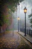 Den mystiska bakgatan i dimmig hösttid Arkivfoto