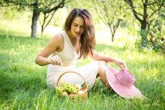 Den nätta flickan i trädgården väljer frukten från korgen fotografering för bildbyråer