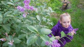 Den nätta flickan sniffar lila blommor fjädrar trädgården lager videofilmer