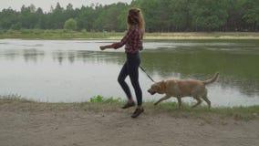 Den nätta kvinnan går med hunden nära sjön arkivfilmer