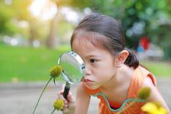 Den nätta lilla asiatiska barnflickan med förstoringsglasblickar på blomman i sommar parkerar royaltyfria bilder