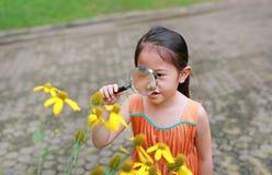 Den nätta lilla asiatiska barnflickan med förstoringsglasblickar på blomman i sommar parkerar arkivfoto