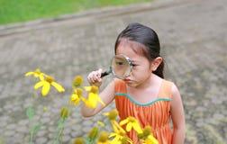 Den nätta lilla asiatiska barnflickan med förstoringsglasblickar på blomman i sommar parkerar arkivfoton