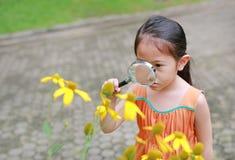 Den nätta lilla asiatiska barnflickan med förstoringsglasblickar på blomman i sommar parkerar royaltyfri foto