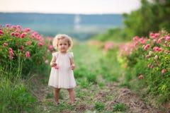 Den nätta lockiga barnflickan går i vårträdgården med blommor för rosa färgblomningrosor, solnedgångtid Arkivfoto