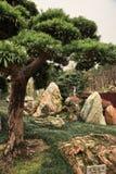 Trädgård av stora stenar i Hong Kong Arkivfoton