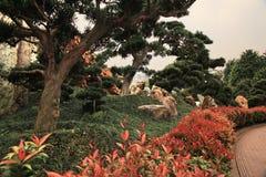 Trädgård i Hong Kong Arkivbilder