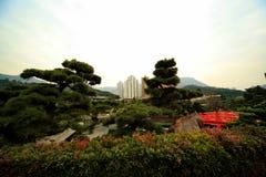 Nan Lian trädgård i Hong Kong Arkivbild