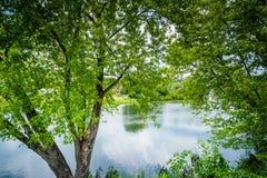 Den Nashua floden, i Nashua, New Hampshire Arkivfoto