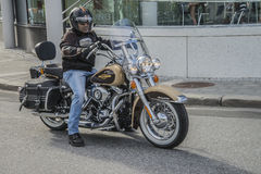 Den nationella GÖDSVINET samlar Halden, Norge 12 till 15 Juni 2014 (cyklar) Royaltyfri Foto