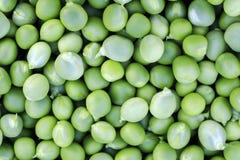 den naturliga bakgrunden av många rundar mogna gröna ärtor royaltyfri bild