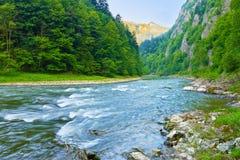 Den naturliga reserven för Dunajec flodklyfta. Arkivfoton