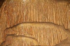 Den naturliga texturbilden av den nätta naturliga grottan med räv-färgade väggar och bildande av stalagmit överallt - marmorera g royaltyfria foton