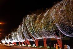 Den 42nd berömmen för nationell dag på Bahrain Royaltyfri Bild