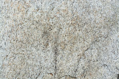 den nevada rocken texture oss Royaltyfria Bilder