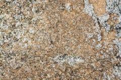 den nevada rocken texture oss Arkivbilder