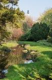 Den Nitra slotten och hösten parkerar Royaltyfria Foton