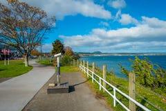 DEN NORR ÖN, NYA SJÄLLAND MAY 18, 2017: Härlig sikt av hamnplatsen och älskvärd sikt av sjön Taupo med berg en stad Royaltyfria Foton
