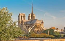 Den Notre Dame domkyrkan, Paris, Frankrike Royaltyfri Fotografi