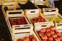 Den ny tomaten, peppar och paprika på lantgården marknadsför Naturliga lokala produkter på lantgårdmarknaden plockning Säsongsbet Royaltyfri Fotografi