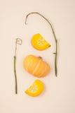 Den nya apelsinen klippte pumpa och torkade filialer på en ljus beige pas Royaltyfri Fotografi