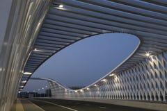 Den nya bron i Peking (2) Royaltyfria Foton