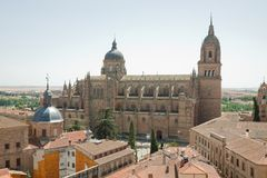 Den nya domkyrkan - Salamanca royaltyfri bild