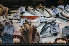 Den nya fisken på försäljning på en fiskhandlare stannar i stadmarknaden, London, UK arkivfoton