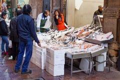 Den nya fisken shoppar Arkivfoton