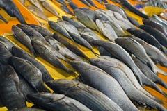 Den nya fisken visar på försäljning på marknaden för havsmat arkivbild