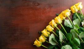 Den nya gulingrosen blommar på abstrakt bakgrund av en träflik Arkivbilder