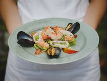 Den nya havs- maträtten i en dyr restaurang modern restaurang Yrkesmässigt kök Härlig portion av mat Arkivbild